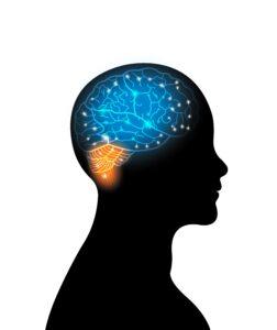 Savjeti o prehrani koja će vam osigurati budnost i mozgu energiju